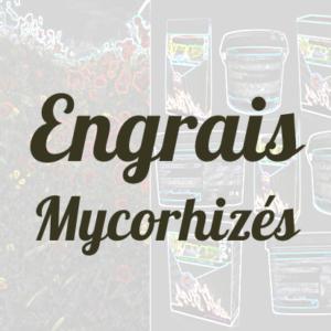 Engrais mycorhizé